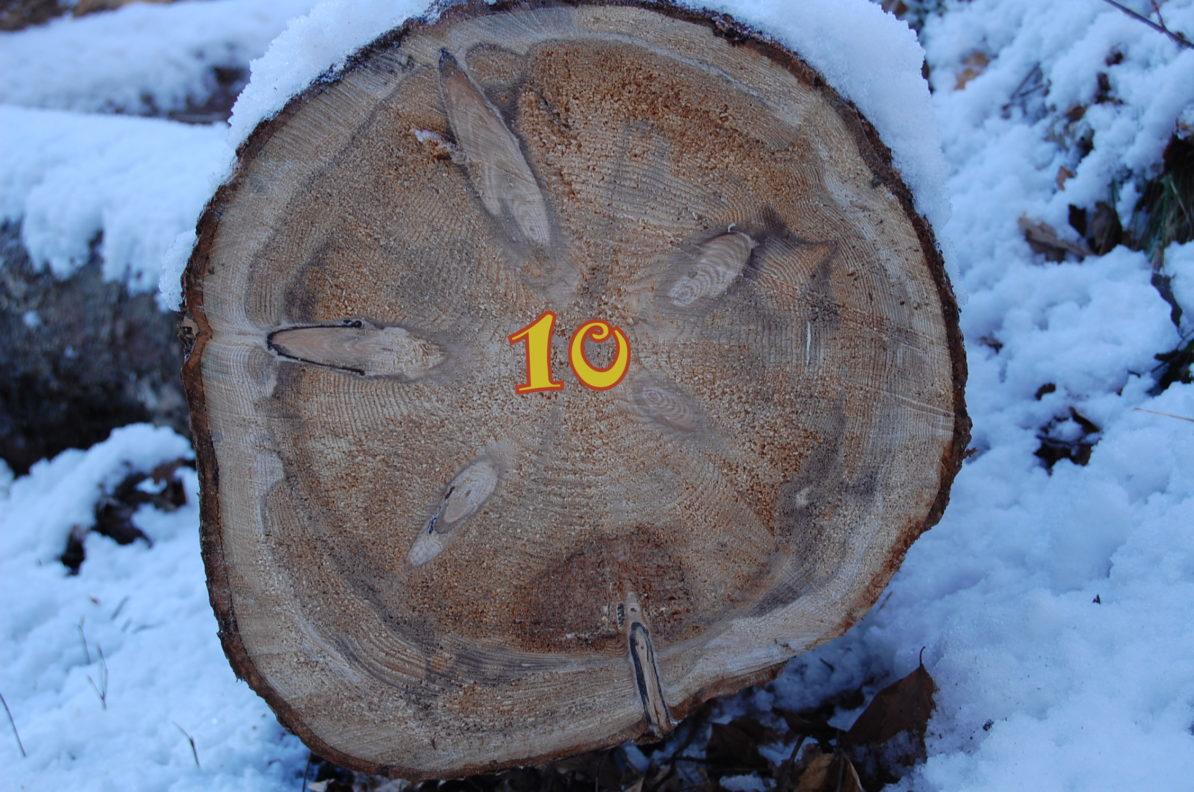 10. Dezember - Adventskalender