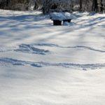 Zielerreichung - Spuren im Schnee