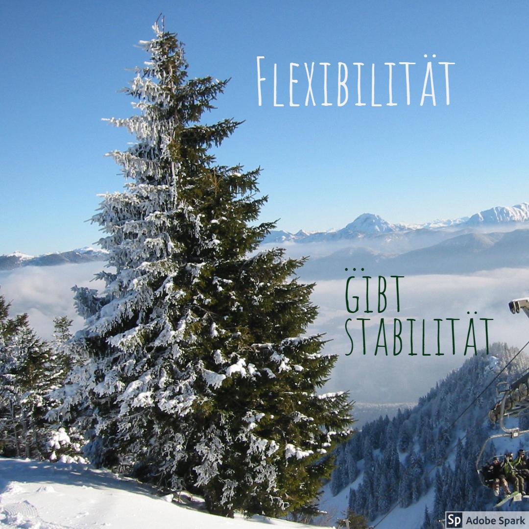 Flexibiität gibt Stabilität