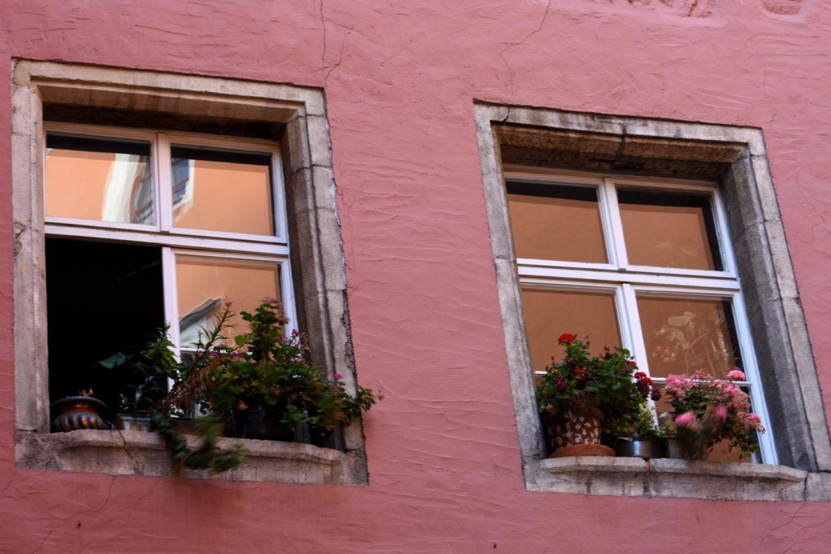 Was dein Lernen beeinflusst - (Lern)Fenster auf oder zu